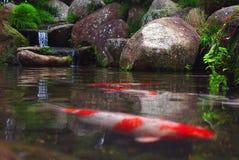 japoński ogród zdjęcia stock