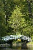 japoński ogród zen. fotografia royalty free