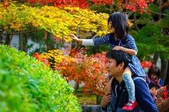 Japoński ojciec i dauther bierzemy spacer w ogródzie w jesieni przy Eikando Zenrinji świątynią Fotografia Royalty Free