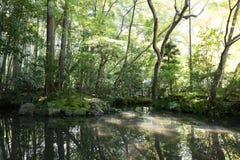 Japoński orientalny zieleń ogródu widok i staw Obraz Stock