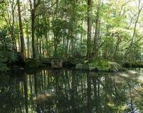 Japoński orientalny zieleń ogródu widok i staw Obrazy Royalty Free