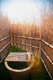 Japoński wodny staw, wodny zbiornik z podlewanie puszką Zdjęcia Royalty Free