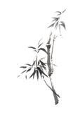 Japońskiego stylu bambusa gałąź sumi-e wyginający się obraz royalty ilustracja