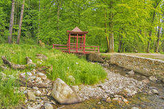 Japońskiego stylu most Obrazy Royalty Free