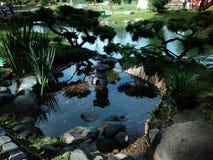 Japończyka ogród. Buenos Aires Fotografia Royalty Free