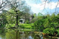 Japończyka ogród w kwiacie fotografia royalty free