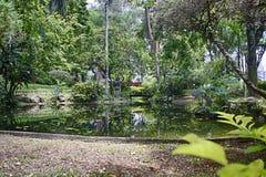 Japończyka ogród w Parkowym Santos Dumont, Sao Jose dos campos, Sao Paulo, Brazylia Obrazy Royalty Free