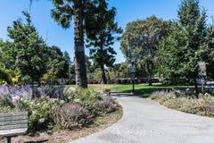 Japońscy ogródy, San Mateo, Kalifornia Zdjęcie Royalty Free