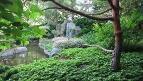 japońska ogrodowa wodospadu Fotografia Stock