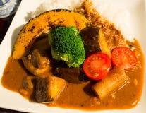 Japoński curry, Kyoto styl Obrazy Stock