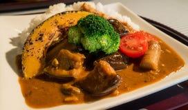 Japoński curry, Kyoto styl Obrazy Royalty Free
