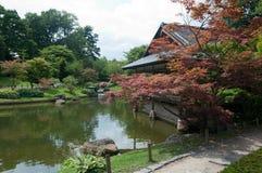 japoński ogród Fotografia Stock