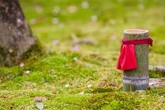 japoński ogród szczególne Fotografia Royalty Free
