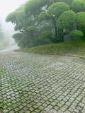 japoński park Obrazy Royalty Free