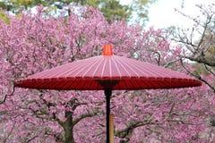 Japoński tradycyjny czerwony parasol Zdjęcia Royalty Free