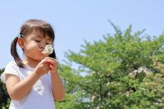 Japońskiej dziewczyny dandelion podmuchowi ziarna pod niebieskim niebem Zdjęcia Royalty Free