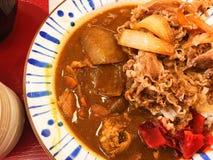 Japonés del curry Imágenes de archivo libres de regalías