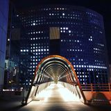 Japon桥梁 免版税库存照片