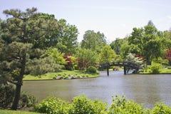 Japonais de jardin Image stock