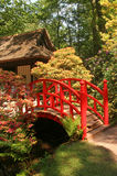 Japonais de jardin Photos stock