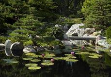 Japonais de jardin de passerelle Photos libres de droits
