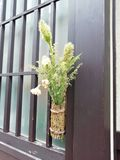 Japonais Ikebana photos stock