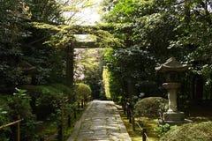 Japonia fotografia royalty free