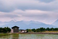 Japonia Alps na chmurnym dnia i zieleni ryż polu, Hotaka miasteczko, Naga zdjęcia royalty free