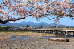 Japonia, Arashiyama - Obrazy Royalty Free