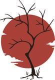 Japonia drzewo Obrazy Royalty Free