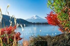 Japonia góra Fuji i Kawaguchiko jesieni Jeziorny widok Fotografia Stock