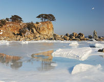 Japonia morze. Wyspa 2 Obrazy Stock