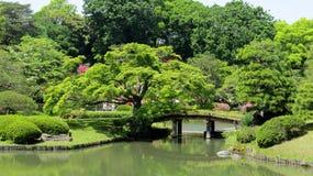 Japonia Tokio 6 Zdjęcie Royalty Free