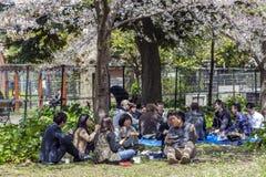 Japonia, Tokio, 04/12/2017 Firma przyjaciele ma lunch w parku obrazy stock