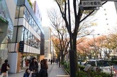 Japonia Tokio, Nonember, - 24, 2013: Ludzie robi zakupy przy Omotesando ulicą Obraz Royalty Free
