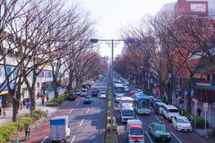 Japonia w jesień sezonie Zdjęcia Stock