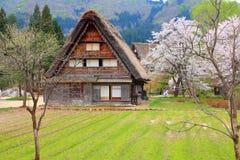 Japonia wioska Obraz Royalty Free