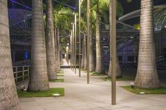 2008 Japonii dotonbori avenue obszaru nocy Osaka lat Zdjęcie Royalty Free