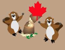 Jaques canadenses da madeira serrada. o castor Imagem de Stock Royalty Free