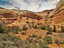 Jarów obręczy Rekreacyjny teren w Utah Fotografia Stock