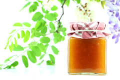 Jar of apricots jam Royalty Free Stock Image