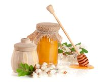 Jar and barrel of honey with flowers of acacia isolated on white background Stock Photography