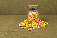 Jar of Candy Corn. This tasty Halloween treat is ready for fall snacking Stock Photography