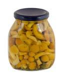 Jar canned honey fungus isolated white background Royalty Free Stock Images