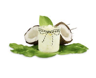 Jar of coconut oil and fresh coconuts isolated on white background. Coconut nuts with leaves Stock Photo