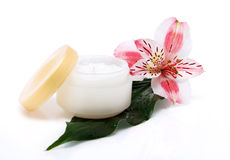 Jar of a cosmetic cream Royalty Free Stock Image