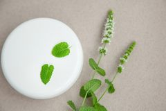Jar of cream with sprigs of fresh peppermint on a grey background. Top view. Jar of cosmetic skin care cream next to fresh peppermint on a grey background. Top royalty free stock image
