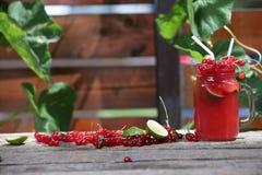 Jar of cranberries fresh juice Stock Image