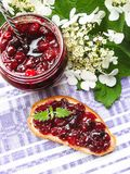 Jar of cranberry jam, selective focus. Preserved food. Morning still life. Food for breakfast or snack. Jam with bread Royalty Free Stock Photos