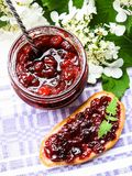 Jar of cranberry jam, selective focus. Preserved food. Morning still life. Food for breakfast or snack. Jam with bread Royalty Free Stock Photography